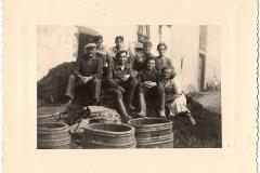 Vendange 1949